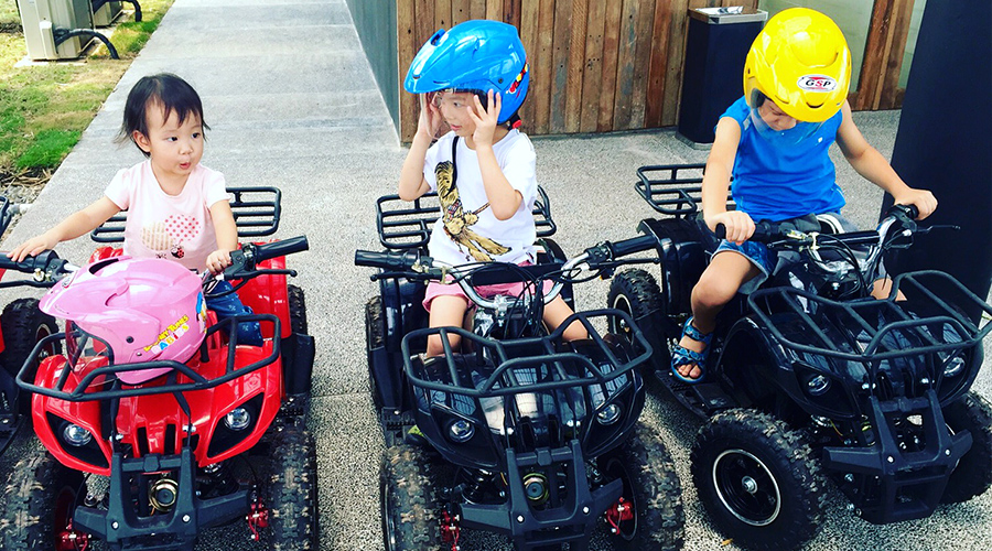 Image result for Mini Electric ATV canopi