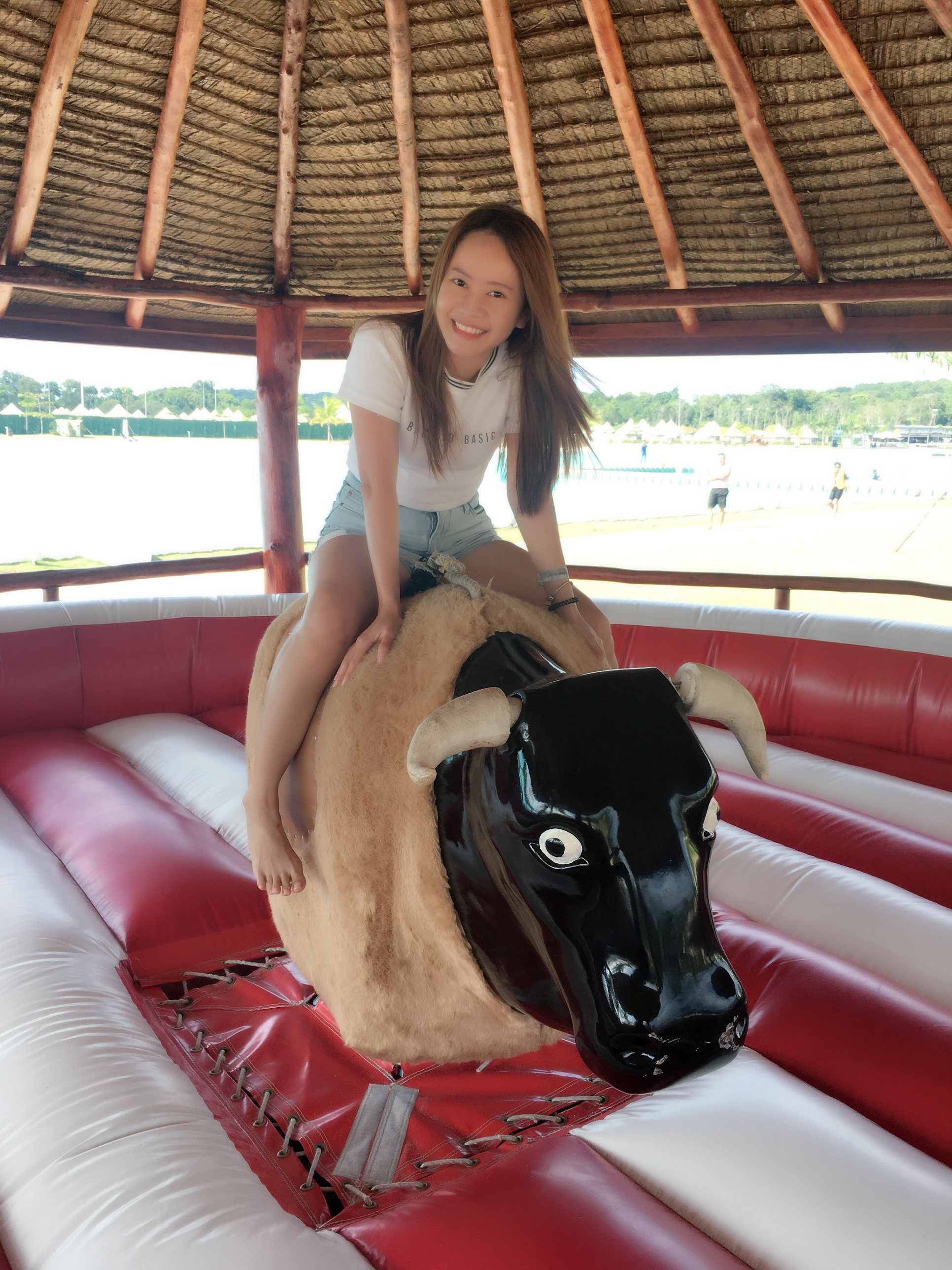 Image result for rodeo bull canopi